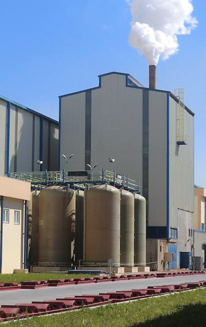 service_plant
